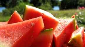 Uzgoj popularnog povrća lubenice