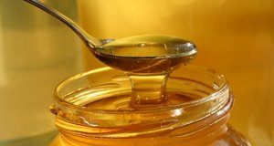 Med od maslačka – recept