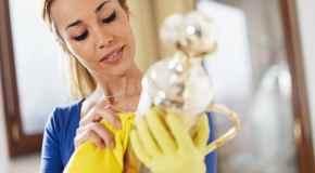 Održavanje čistoće u kući