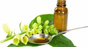 Ulje konoplje – učinkovita pomoć kod bolesti