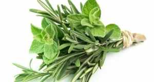 Ljekovita svojstva gospine trave