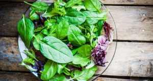 Hrana bogata E vitaminom