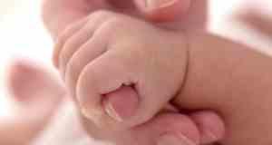 bebina ruka