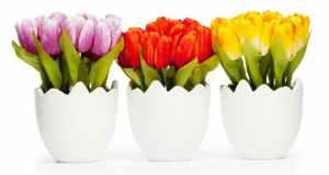 savjeti za sušenje cvijeća