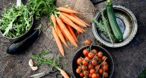 Osnove zdrave prehrane