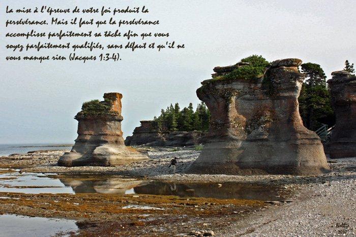 Le pardon accordé par Joseph, David et Étienne nous inspire à persévérer dans nos épreuves (Jacques 1.3-4)