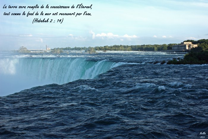 ¿Saber y creer? Habacuc 2.14