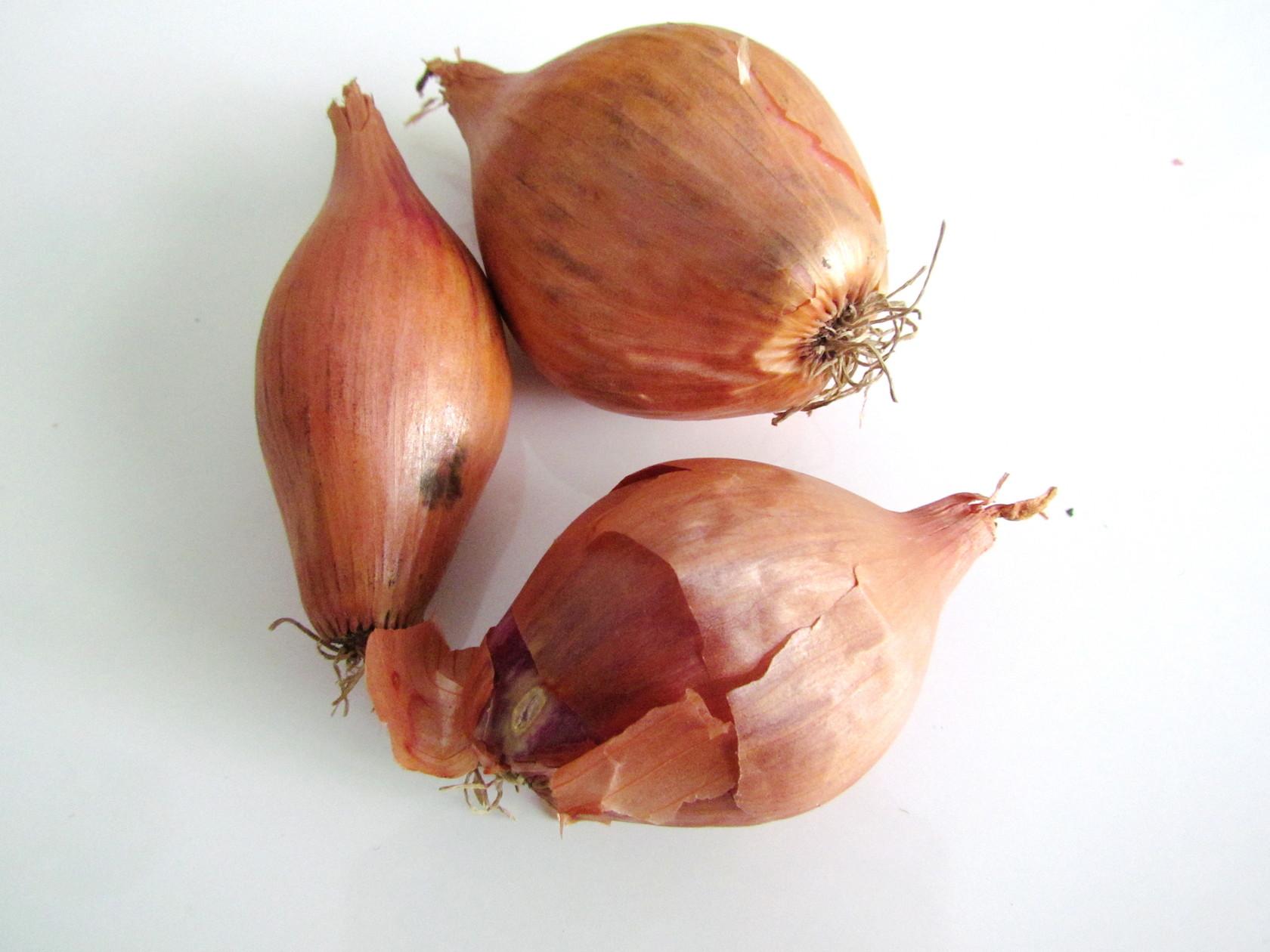 seasonal produce guide for switzerland: april