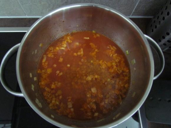 lentilles avec purée de tomate | www.savormania.com