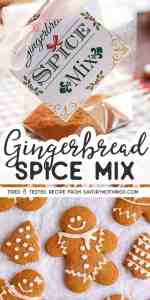 Gingerbread Spice Mix Pin