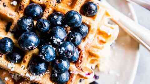 Blueberry Waffles on a white plate.