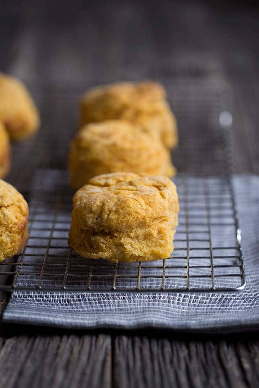 A macro closeup photo of this tender sweet potato biscuit recipe