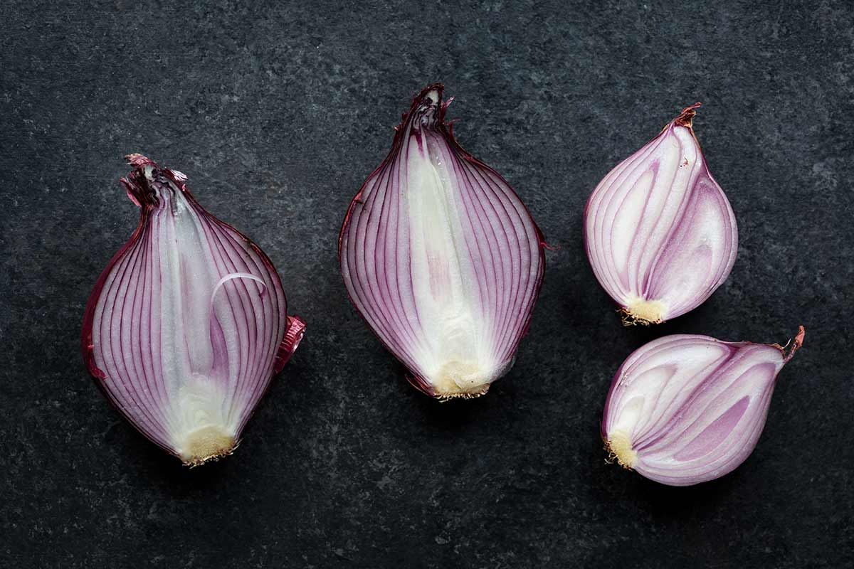 A red onion sliced down the middle next to a shallot sliced down the middle for comparison.