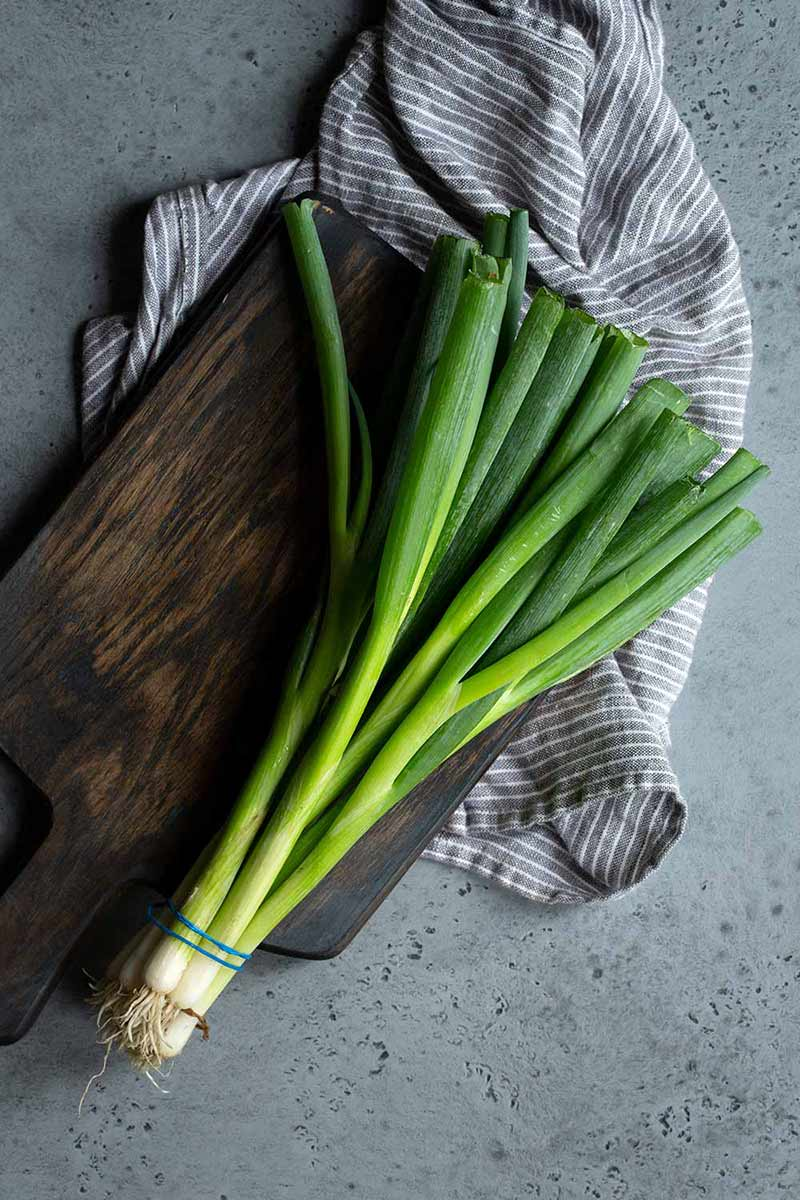 bunch of scallions on a cutting board with a napkin