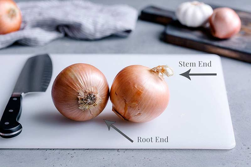 Two onions, one showing the stem end and one showing the root end
