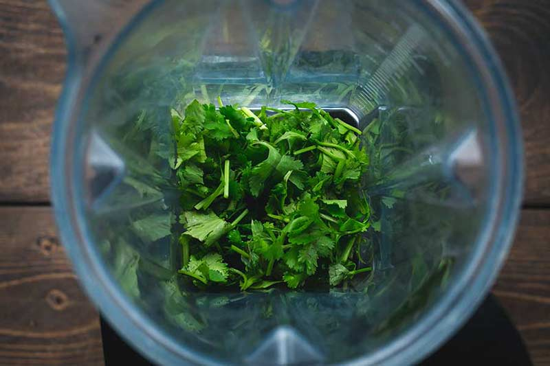 Overhead shot of cilantro in a blender
