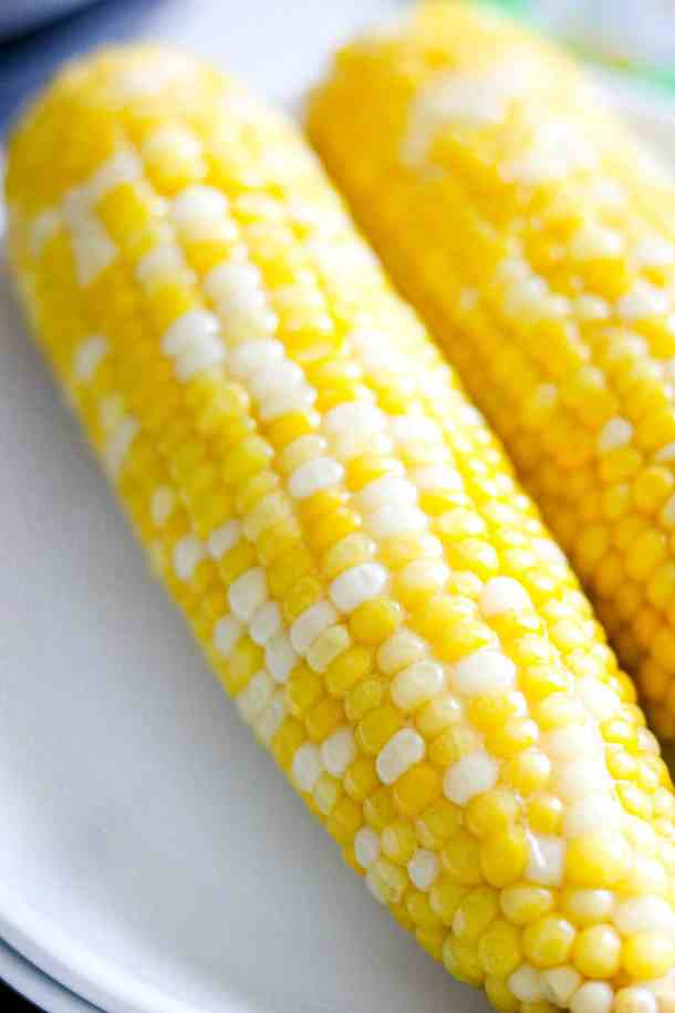 Corn on the cob on white plate