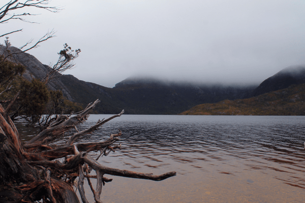 dove lake cradle mountain tasmanie