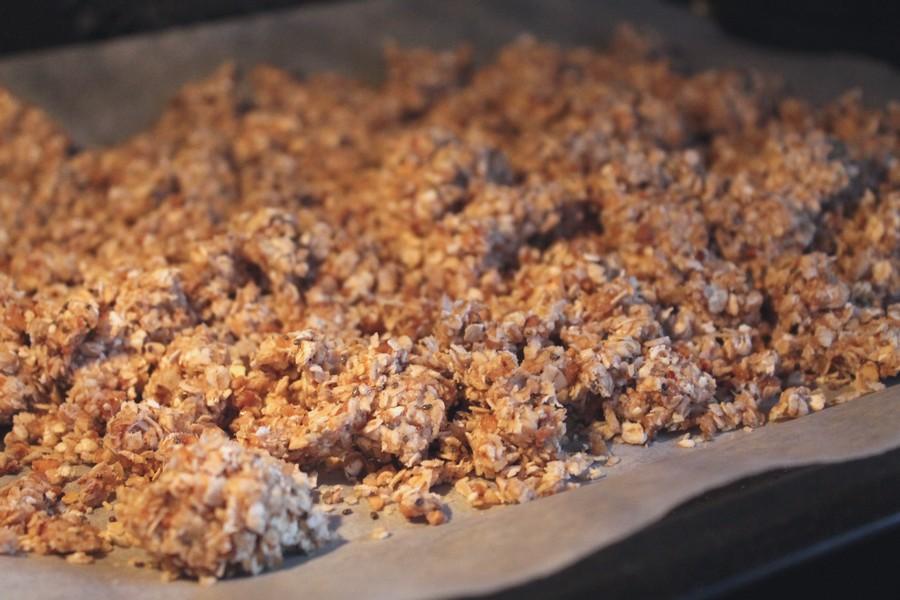 granola-pomme-cranberry-végétalien