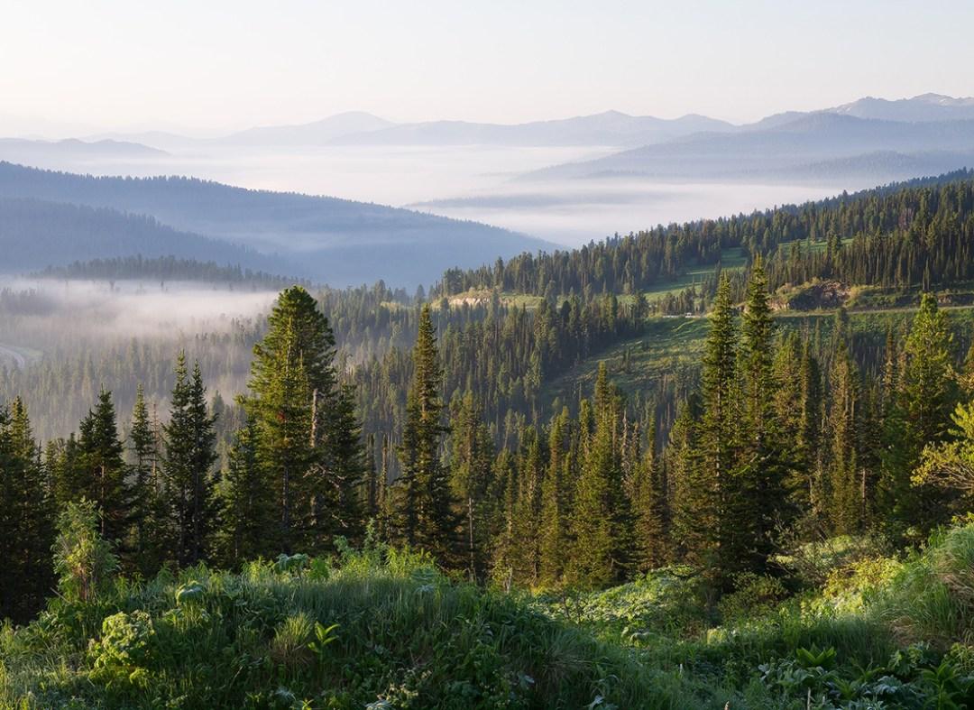 altai region montagneuse russie