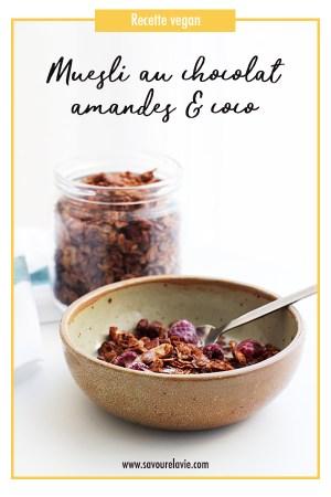 muesli chocolat amande coco healthy vegan