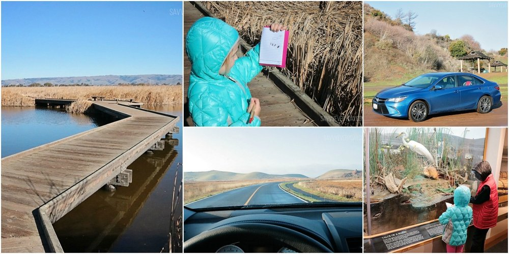 Collage showing pictures of Coyote Hills and the Camry SE