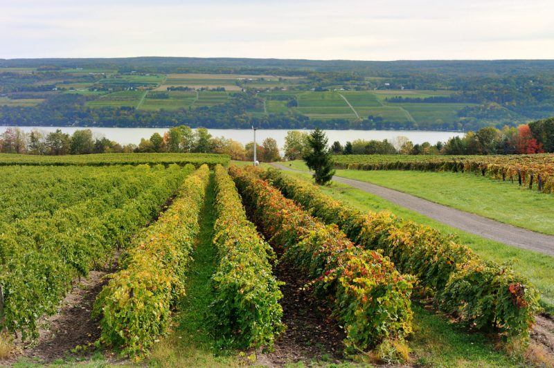 Finger Lakes, Nueva York