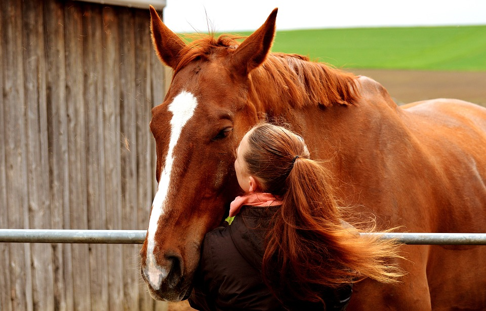 Mother's Day Gift Ideas for Horse Moms