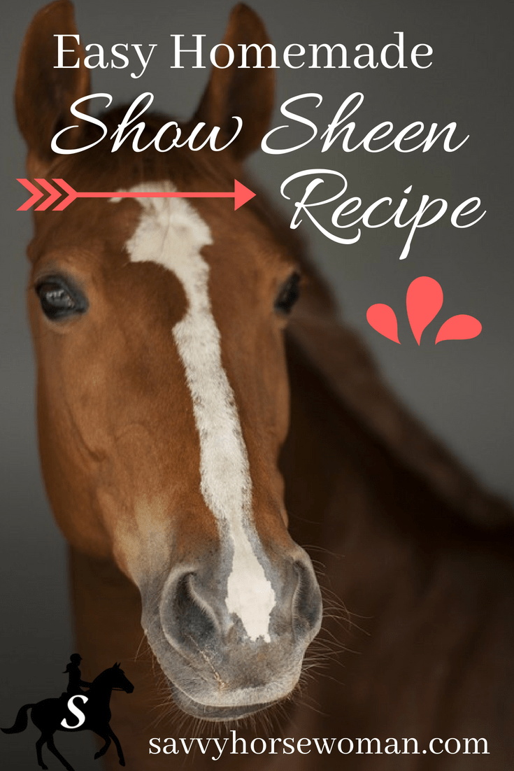Easy DIY Homemade Show Sheen Recipes for Horses from Savvy Horsewoman