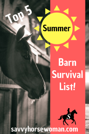 Summer Horse and Rider Tips - Savvy Horsewoman