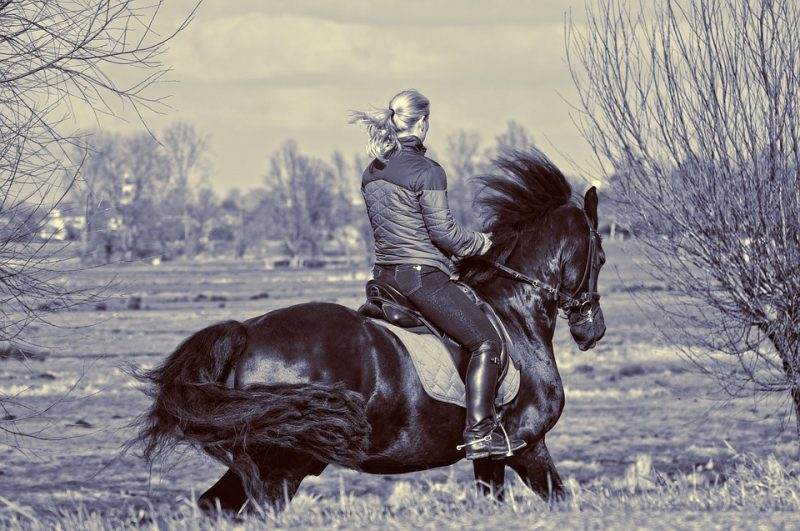 5 Reasons Horseback Riding is Good Exercise