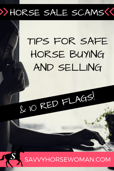 Horse Sale Scams - Tips for Safe Buying and Selling (10 Red Flags)