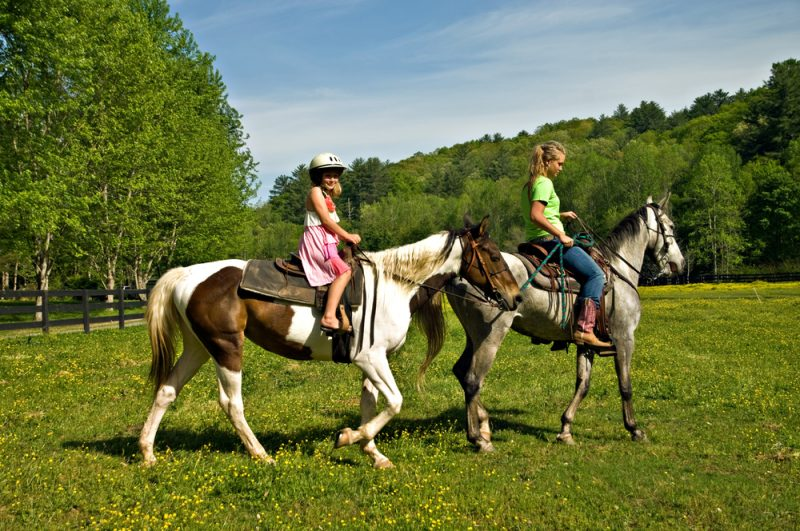 Benefits of horseback riding therapy.
