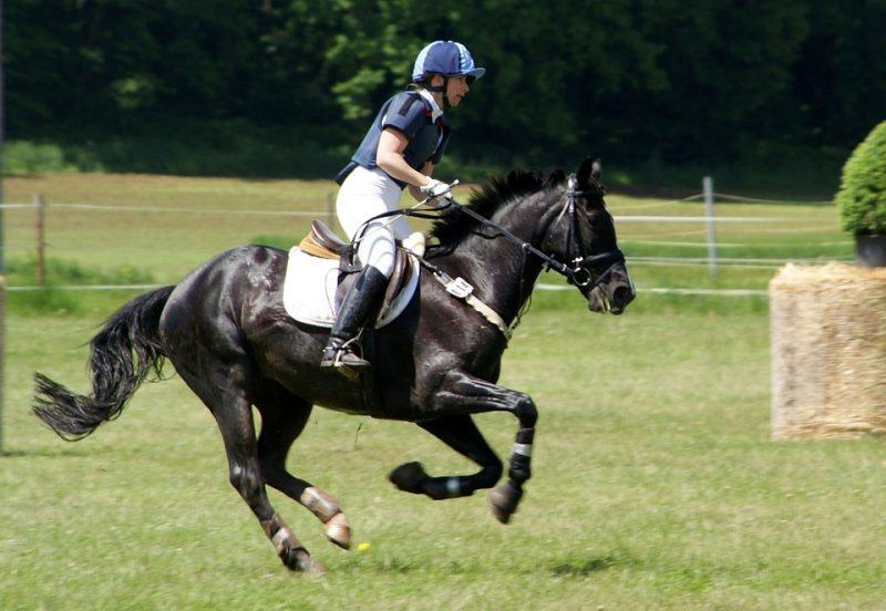 Is horseback riding a sport?