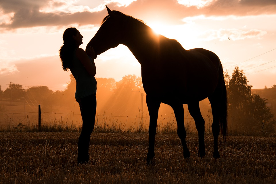 5 Things to Know about Dating a Horse Woman