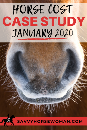 Horse Cost Case Study January 2020 Savvy Horsewoman-Horse Rookie