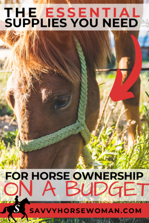 The Essential Supplies You Need to Bring Home Your First Horse