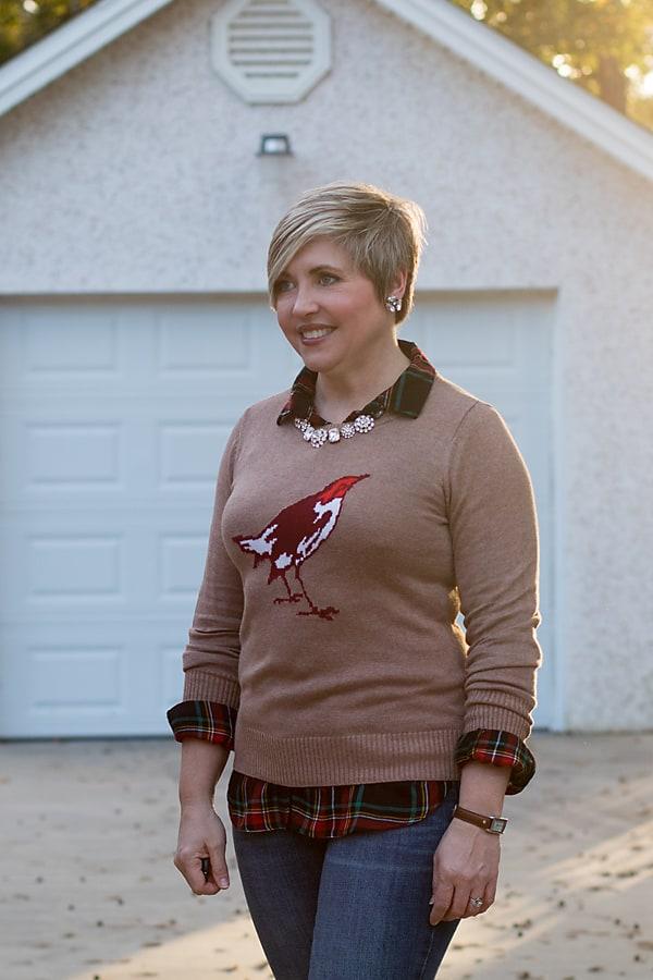 plaid shirt and graphic bird sweater