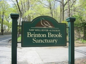 Entrance sign for Brinton Brook Sanctuary on Route 9A in Croton-on-Hudson, New York. Photo: SMRA/Anne Swaim