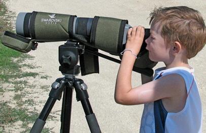 Young birder. Photo: Christine McCluskey