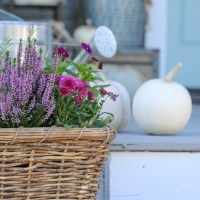 Front Porch Makeover for Fall