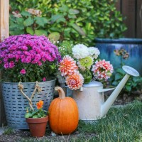 A Colorful Fall Patio and Urban Farm Tour