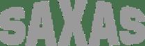 SAXAS - Der Profi für den Verteilerverkehr