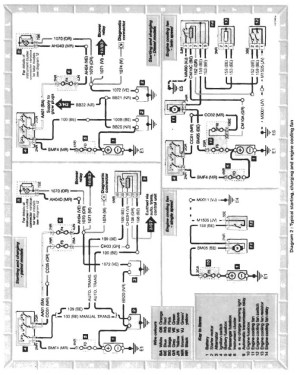 engine loom (wiring diagram)  Saxperience  Citroen Saxo