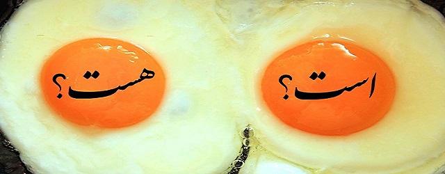 """تفاوت بین است و هست! زردی تخم مرغ سفید """"است"""" یا """"هست""""؟"""