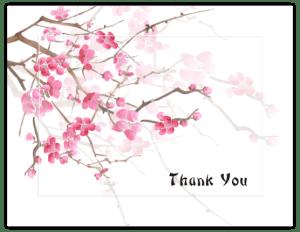 FL 12a - cherry blossoms