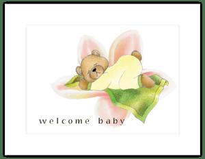 BB 11b - teddy blanket