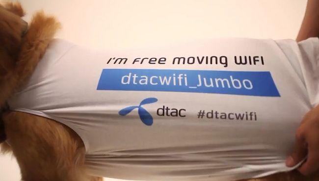dtac-moving-3-1