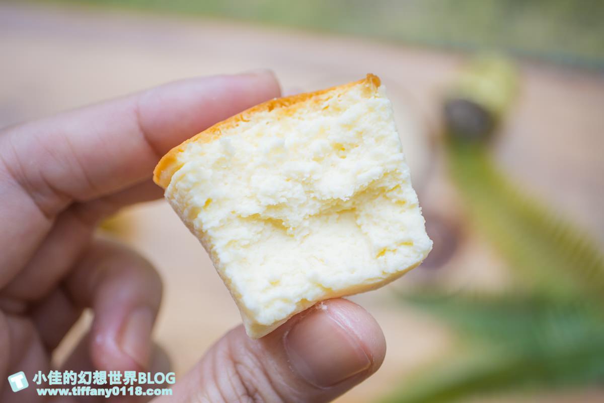 [台中美食]禾雅堂經典乳酪蛋糕/台中伴手禮推薦/重乳酪蛋糕超好吃