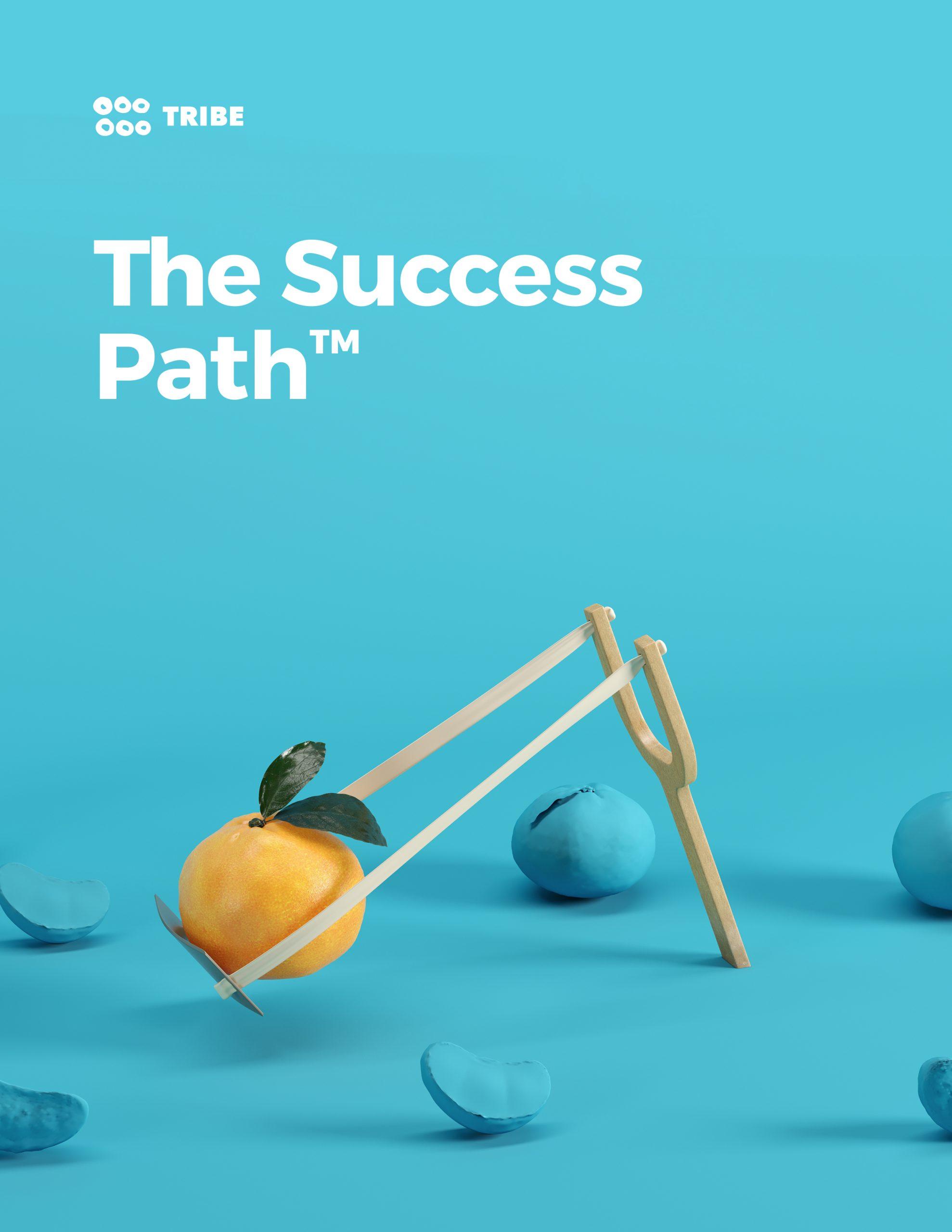 The Success Path